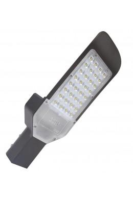 Уличный светильник Кобра - 100 Вт(W)