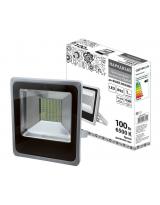 Светодиодный прожектор TDM ELECTRIC СДО100-2-Н
